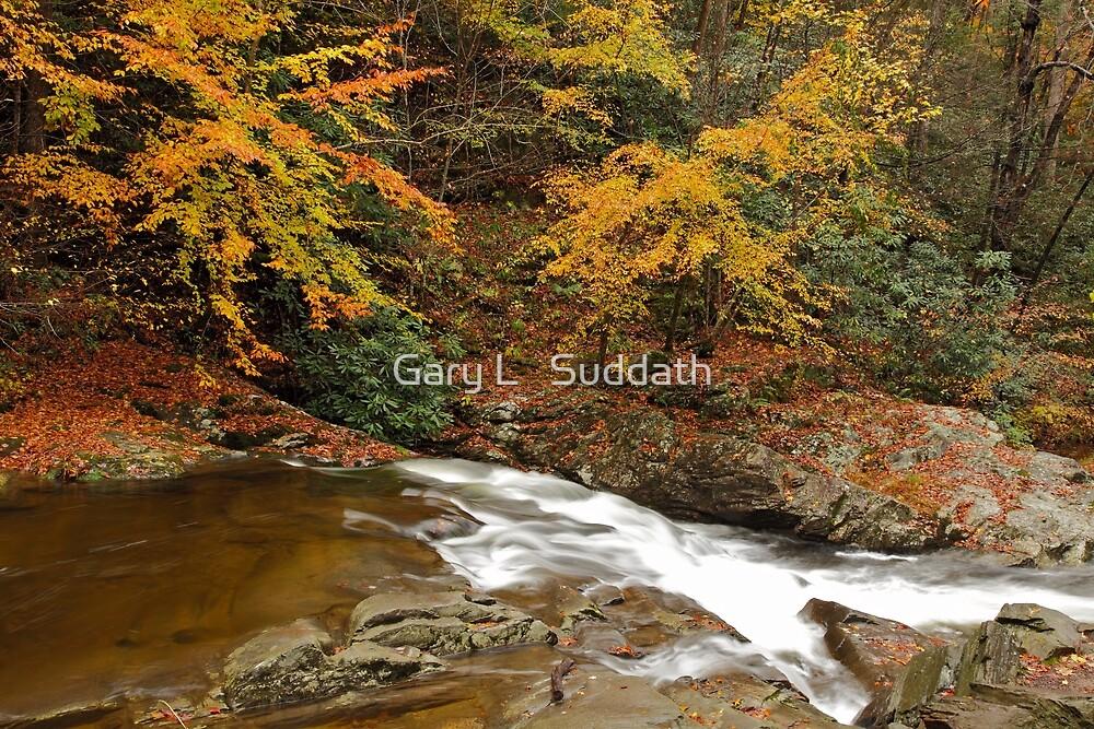 Laurel Creek Cascades II by Gary L   Suddath