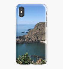Grand Manan Cliffs iPhone Case/Skin