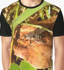 Fly on a brown leaf Graphic T-Shirt