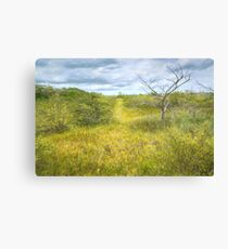 Barrier Island Au Naturel Canvas Print