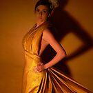 Golden fades  by Liz  Wohlrab