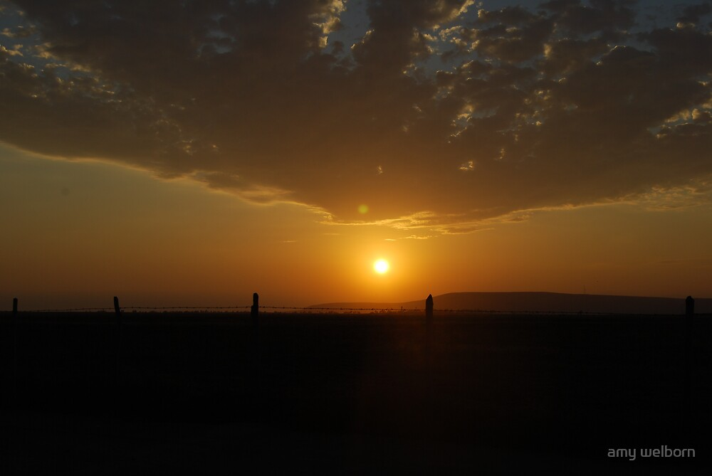 baja sunset by amy welborn