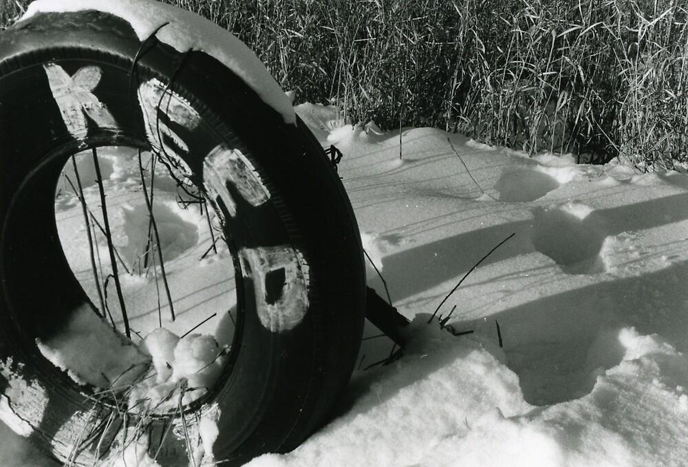 Snowy Irony by SongbirdBreid