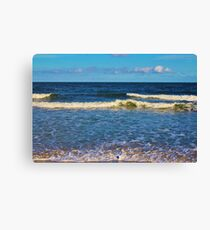 South Carolina Beach Canvas Print