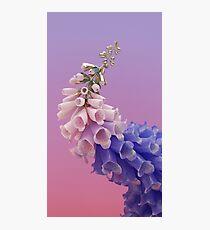 Flume - Skin Photographic Print