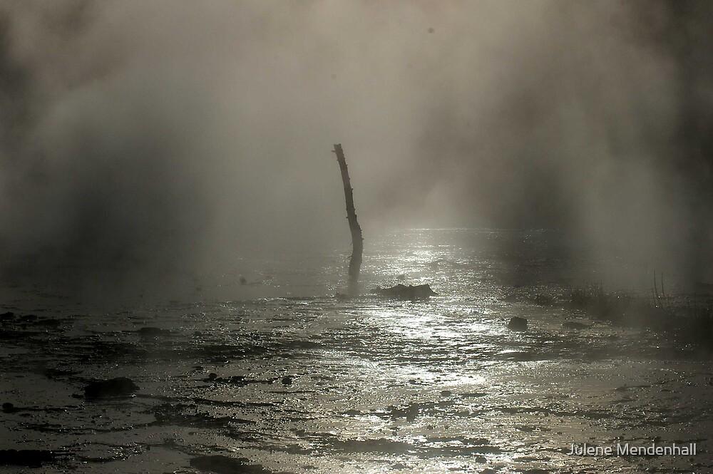 Yellowstone by Julene Mendenhall
