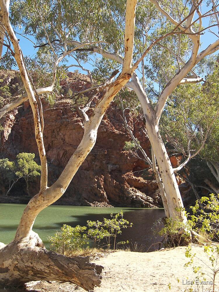 Ellery Creek Big Hole, West MacDonnell Ranges, Northern Territory by Lisa Evans