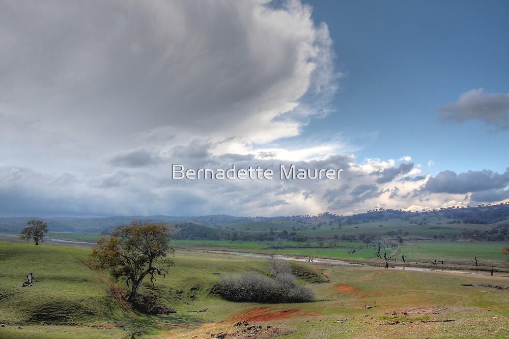 Storm front by Bernadette Maurer