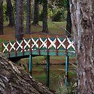 Bridge over calmed waters by Jodi Webb