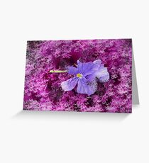 The Kale & The Pansy Greeting Card