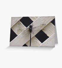big dragon fly Greeting Card