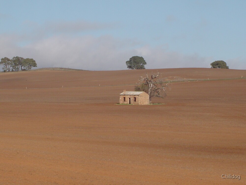 Little house on the prairie... by Chilidog