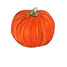 Pumpkin  by Anne Gitto