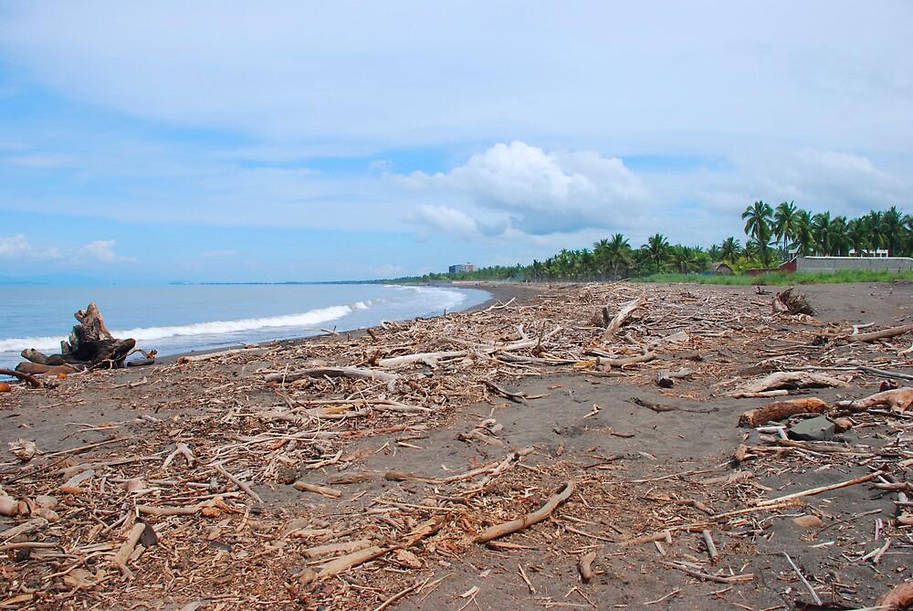 Puntaneras Beach in Costa Rica by Furlong