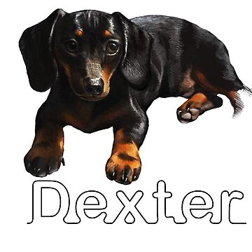Dexter Boy by Lefrog