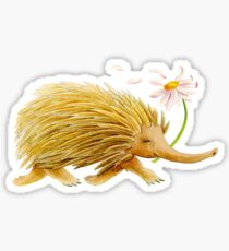 Watercolor whimsy echidna painting Sticker