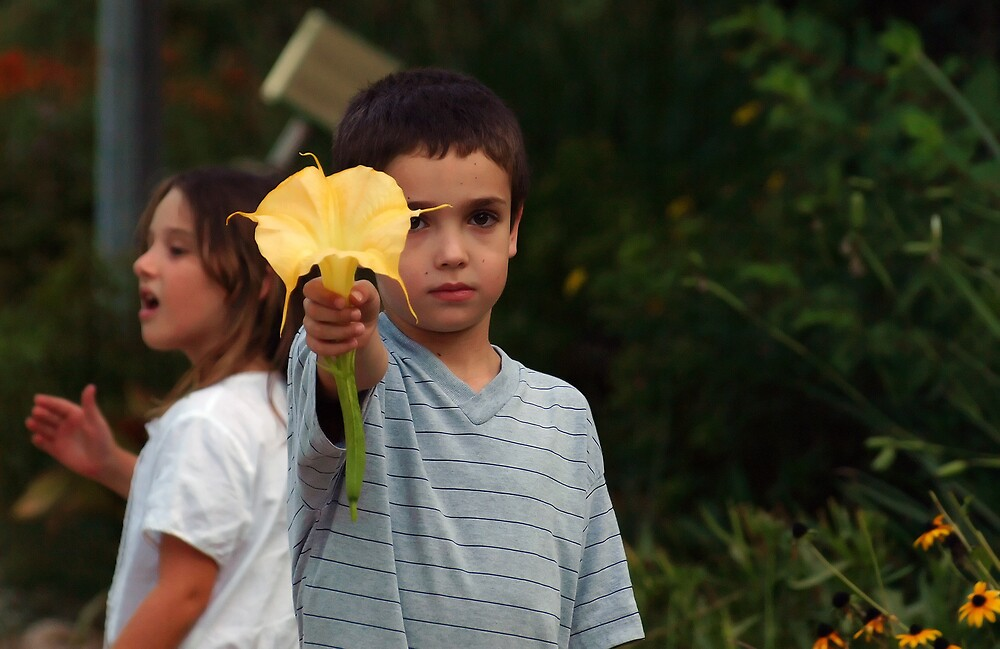 The boy and the flower by MichaelBr