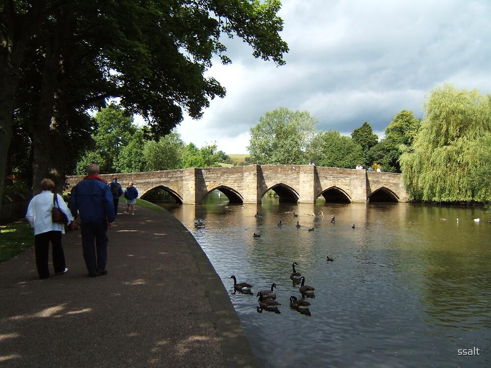 Riverside Stroll by ssalt