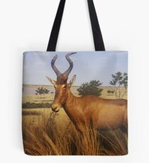 exhibit Tote Bag