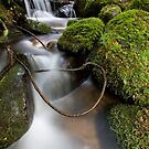 Lasso at Cement Creek by Jared Revell