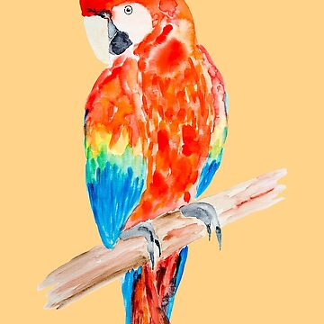 Colorful Parrot Water Color - Papagei farbenfroh Aquarell by SteffiVioletta
