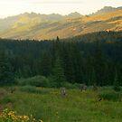 Gore Mountains from Shrine Ridge by Paul Gana