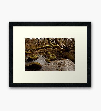 Healing Streams Framed Print