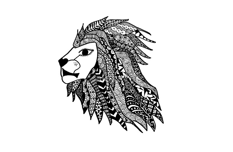 Line Drawing Lion Head : Lion head stock vector art more images of animal  istock