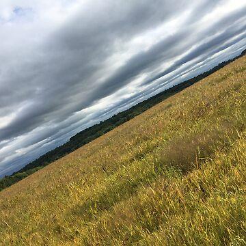 Field in Pennsylvania by DavidGelhar