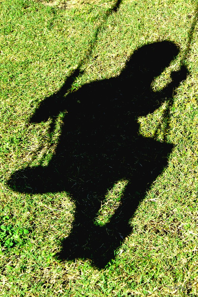 shadow swing by noddy13