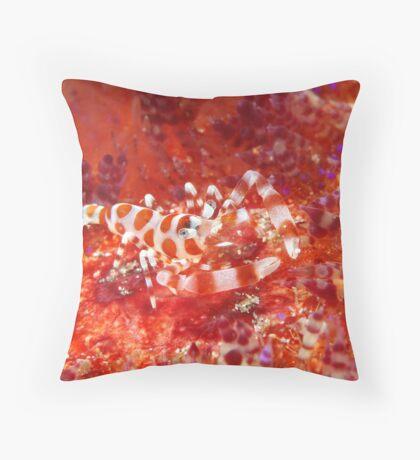 Baptism Of Fire Throw Pillow