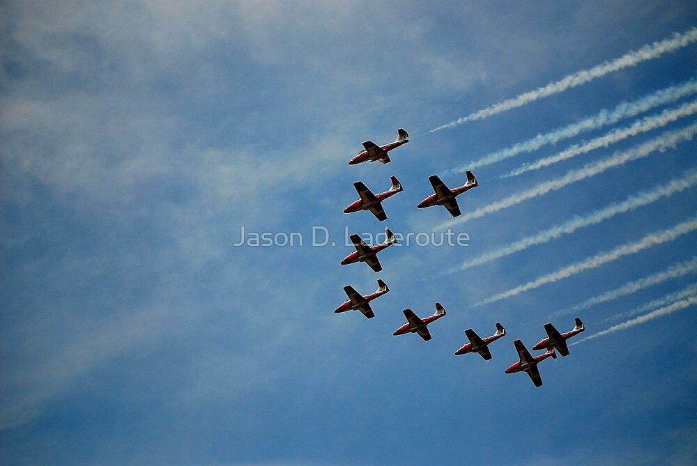 In Flight Formation #11 by Jason D. Laderoute