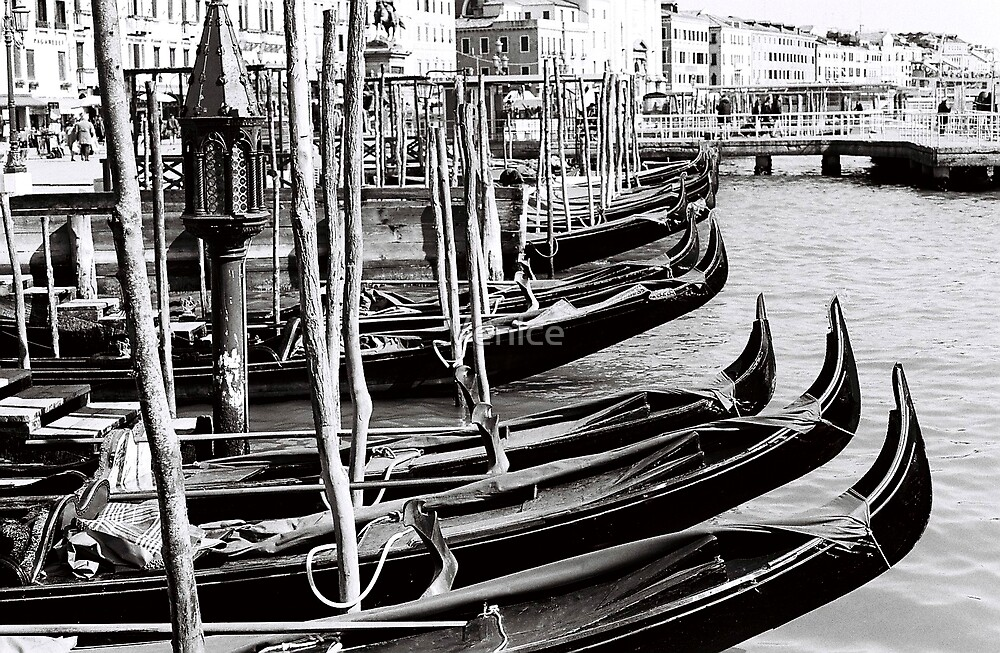Gondolas on hold by Venice