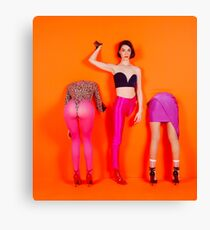 St. Vincent art Canvas Print