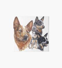 Australian Cattle Dog Art Board