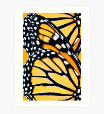 Monarch Butterfly Abstract Wing Pattern Art Print