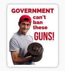 Paul Ryan Guns Sticker