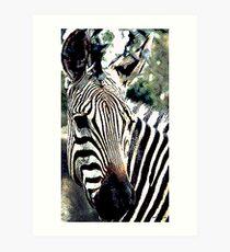 Zebra,136 viewings, 1person favorite, 6 comments Art Print