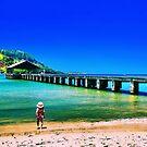 Beautiful Kauai by DJ Florek