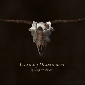 Learning Discernment by AbequeWikimac