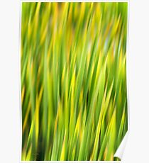 Green Nature Abstract Poster