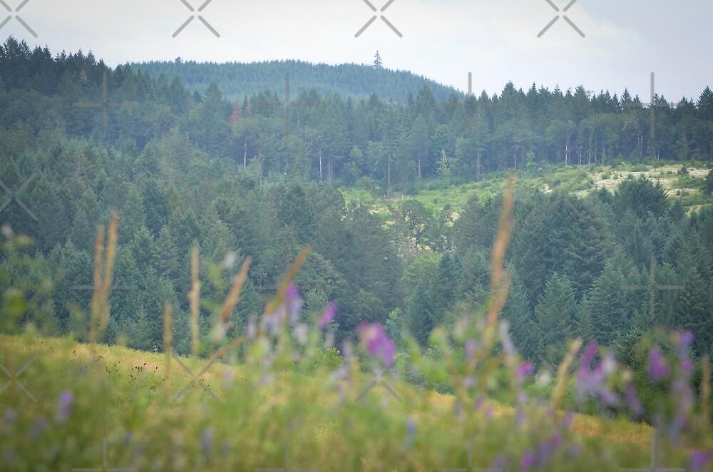 Oregon Countryside  by awanderingsoul