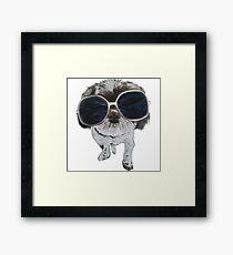 Joe Cool! Framed Print