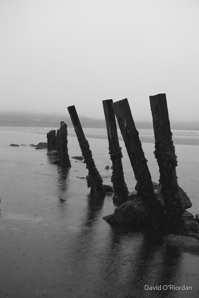 Harbour View Beach by David O'Riordan
