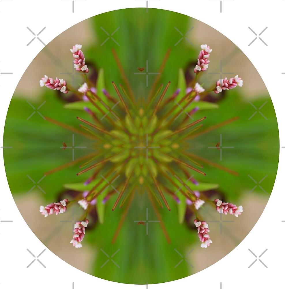 Circle 4: Green Flower Detail by macrodesign