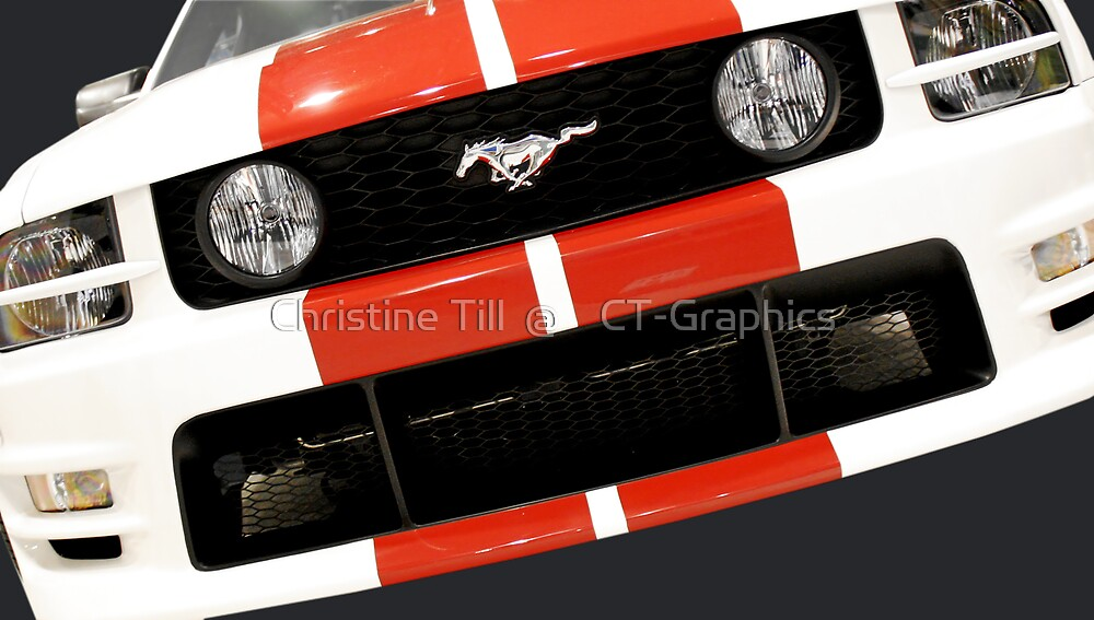 This Pony is Always In Style by Christine Till  @    CT-Graphics