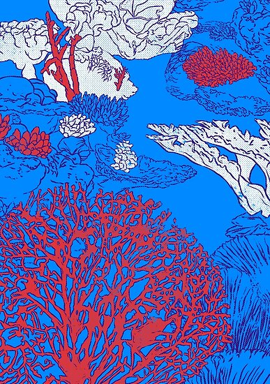 Korallenriff von Evgenia Chuvardina
