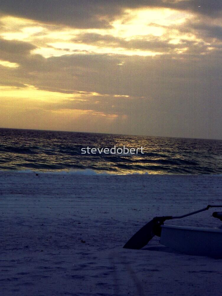 beach by stevedobert