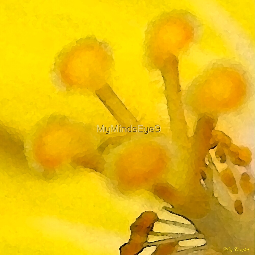 Yellow Mellow © by Mary Campbell