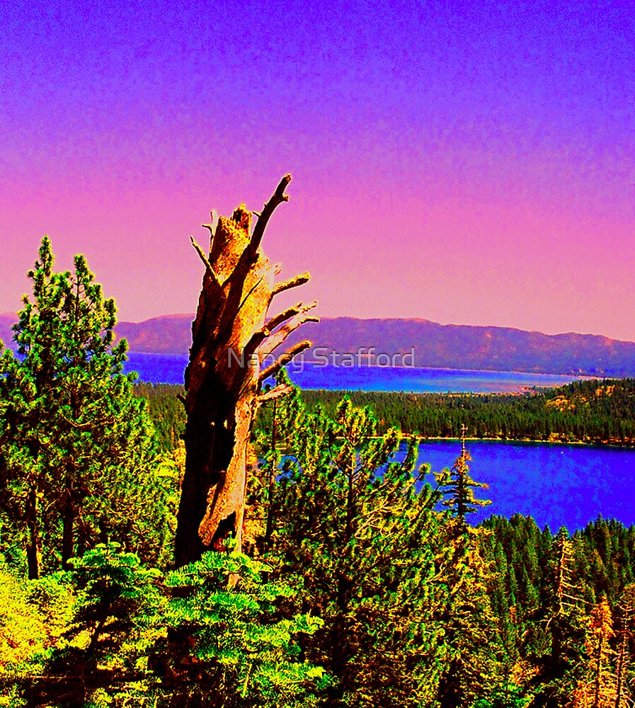 A View of Two Lakes by Nancy Stafford